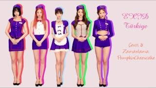 EXID - Will You Take Me (Türkçe Altyazılı)