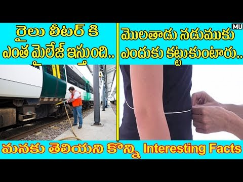 Amazing And Unbelievable Facts || Things You Don't Know || in Telugu || Mysteries & Unknown facts