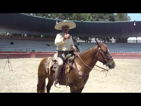Miguel Vega opina respecto al uso del bajador y la rienda