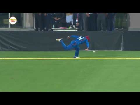 Best Fielding in Cricket History - Top Cricket Fieldings - Cricket Highlights
