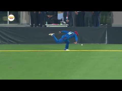 Best Fielding in Cricket History - Top Cricket Fieldings - Cricket Highlights