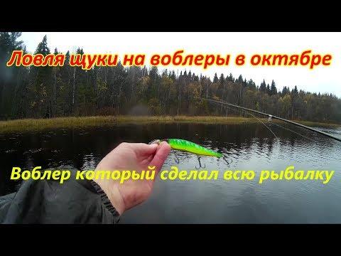 как ловить щуку без поводка