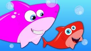 Five Little Sharks | Nursery Rhymes | Baby Rhymes | Children Rhymes For Kids | Kids Tv