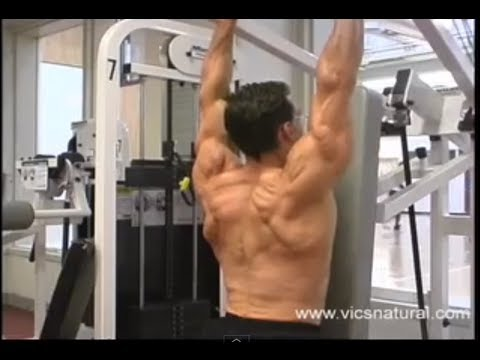 Best Tricep workouts Best triceps workout program bodybuilding workouts exercises routine Image 1