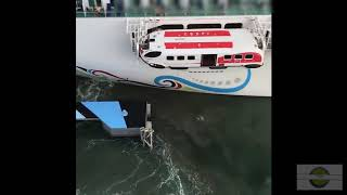 This cruise ship crashed into a dock