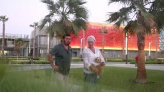 Елена Проклова и Исмагил Шангареев с детьми и их няньками на прогулке (Дубай, ОАЭ)