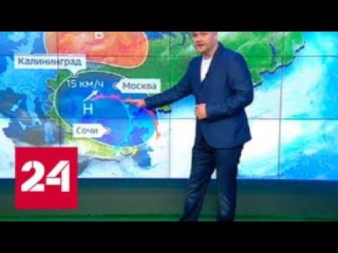 Погода 24: в центре России сыро, но жарко - Россия 24