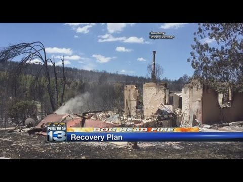 Governor Martinez orders recovery plan for Dog Head Fire