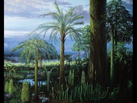 Träden gav jorden nytt liv