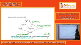 2018 - P6 Science - Week 23 - Mid-Year Diagnostic Test (Food Relationship Between Organisms)