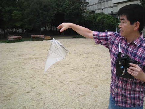 Acrobatic maneuver of 3D printed ornithopter