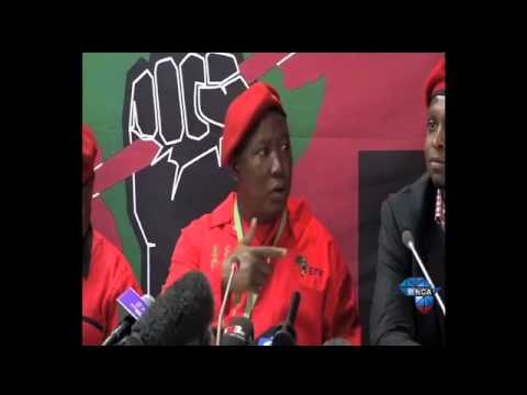Malema praises South Africa's fifth democratic elections