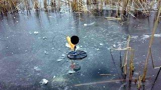 Рыбалка на жерлицы. Ловля щуки и окуня по первому льду.
