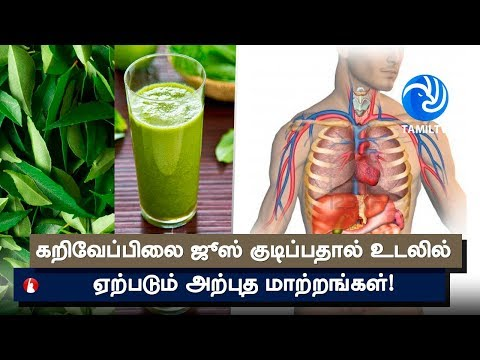 How To Use Curry Leaf (kadi patta) Juice For Gastric Problem & Diarrhoea - Tamil TV
