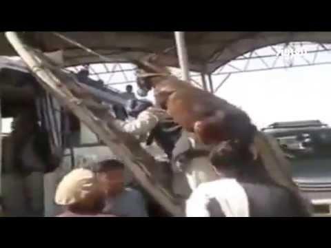 أفغاني يحمل حمارة على ظهرة