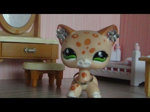 Littlest Pet Shop:Forever(Episode #1 Новенькая)
