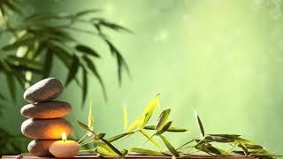 Meditation Music - Relaxing  🎶⭐💤