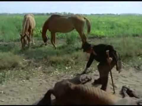 Sanyikám, Sa Sa Sanyííííííííííííííí (indul A Bakterház - Részlet) video