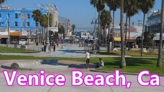 A Typical Day At Venice Beach, California