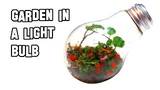 ✔ How To Make A Garden In A Light Bulb