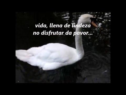 Descargar Mp3 Gratis De Oscar Ovidio