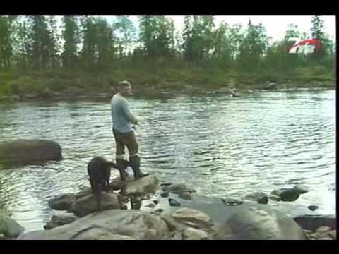 диалоги о рыбалке карась весной видео