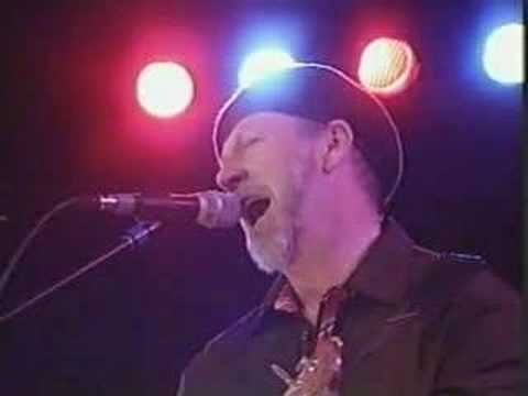 Richard Thompson - Crawl Back Under My Stone
