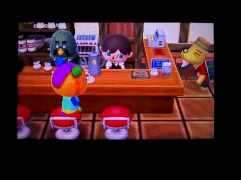 [Animal Crossing New Leaf] : Comment avoir le café et comment travailler pour Robusto