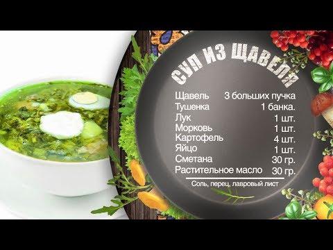 Как приготовить суп из щавеля – рецепт шеф-повара Игоря Артамонова (0+)