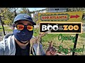 BOO AT THE ZOO Opening Day at Zoo Atlanta 2020! | Trick or Treat Locations! (Halloween at the Zoo)