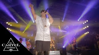 Daddy Yankee - Watch Out For This [Live]