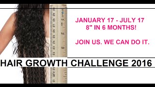 "Hair Growth Challenge 2016 - 8"" In 6 Months (We Can Do It!!!!)"