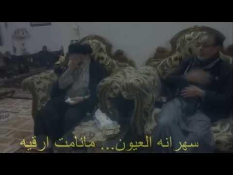 سيد حسين المعموري .......... مربيه لو طيف
