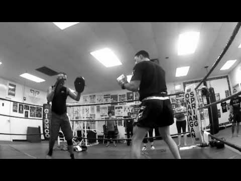 Posener's Pankration and Muay Thai: Slo-Mo Cardio Muay Thai Techniques Image 1