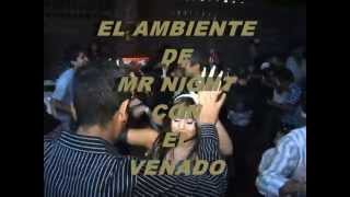 EL VENADO CON DJ MR NIGHT