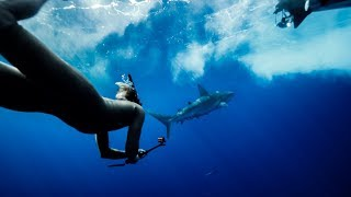 SHARK ENCOUNTER AND BIG WAVE SUPSQUATCHING WITH ROMAN ATWOOD