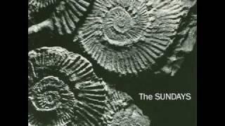 Watch Sundays Skin  Bones video