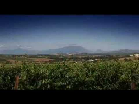 Video over Stellenbosch in de West Kaap in Zuid-Afrika