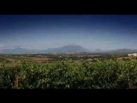 Video over Stellenbosch in de West Kaap in Zuid-Afrika
