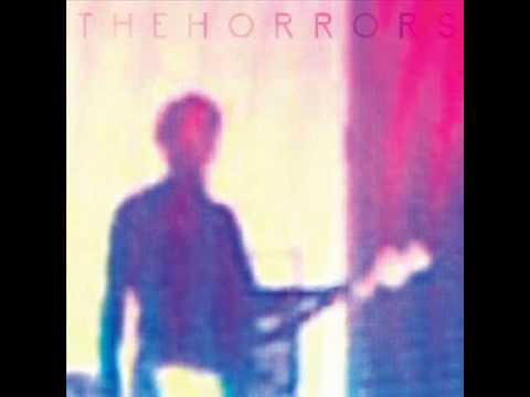 The Horrors - You Could Never Tell (with lyrics)
