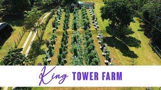 King Tower Farm Tour (2019)