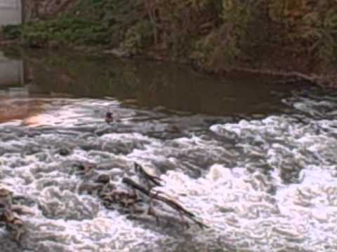 Whitewater in Bowling Green, KY