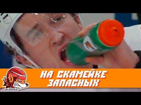 10 лучших моментов на скамейках запасных НХЛ