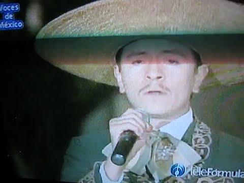 lobo de oro en voces de mexico para el mundo conduciendo