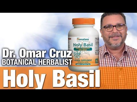 Himalaya Holy Basil with Botanical Researcher Omar Cruz
