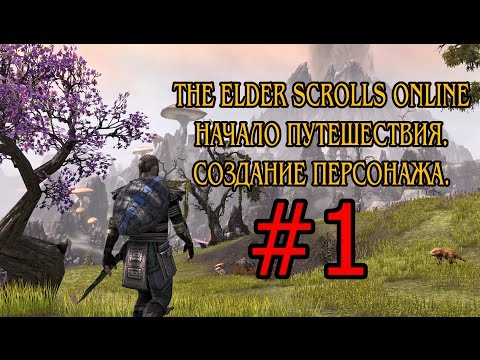 The Elder Scrolls Online - Начало Путешествия.Создание Персонажа.#1