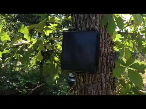 Homestead Driveway Alarm ~ Dakota Alert 2500 ~ Product Review #dakotaalert
