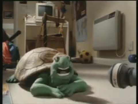 Turtle Song Persian Language ORIGINAL VIDEO