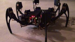 FREAKY Robot! Phoenix Hexapod - Up Close, Questions & Answers