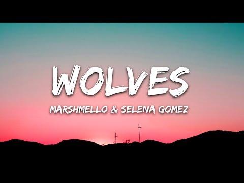Download Selena Gomez Marshmello  Wolves Lyrics  Lyric Video